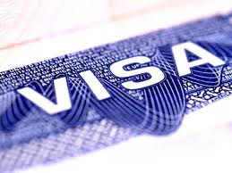 Order Visa documentation and submission services
