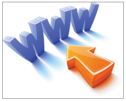Order Dynamic Web Development
