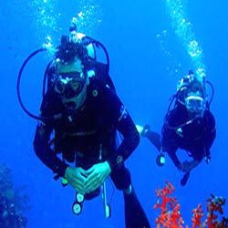 Order Underwater Videography