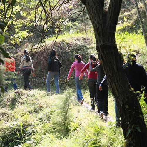 Order Hiking Tours in Shimla