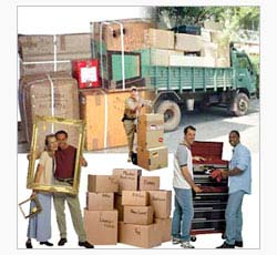 Order Packers and Movers Services