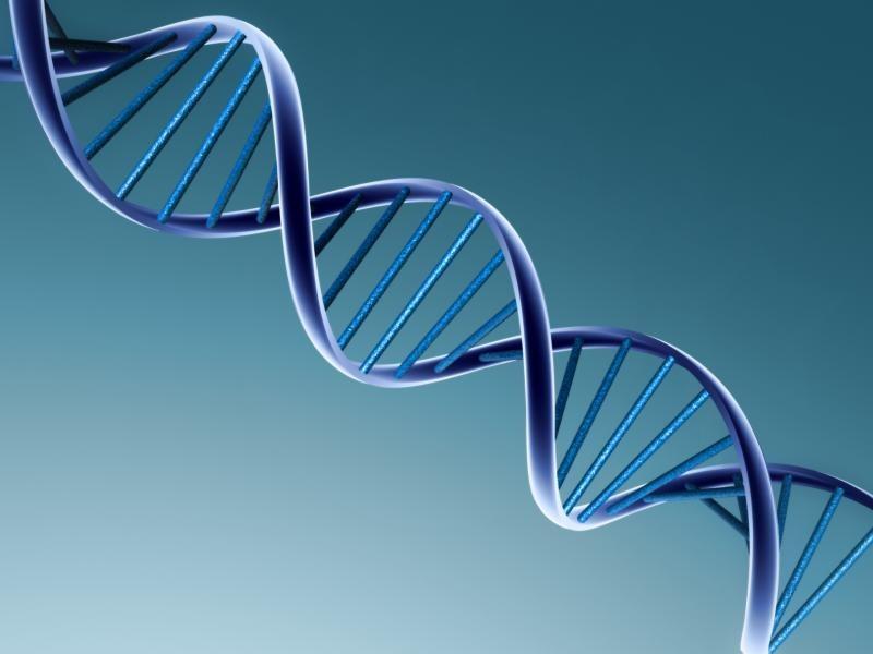 Order Scientific development