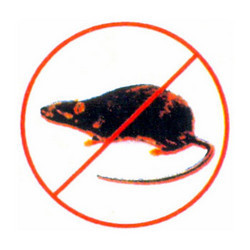 Order Termite/ Rodent Control