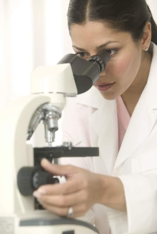 Order Laboratory service