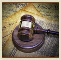 Order Domestic Litigation Services