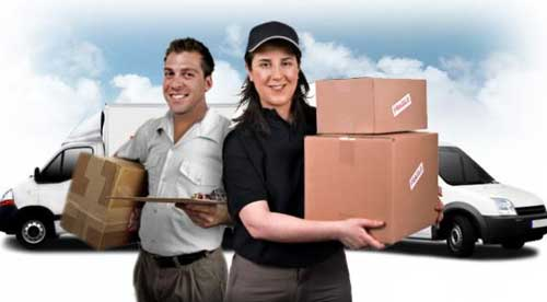 Order Domestic Courier Services