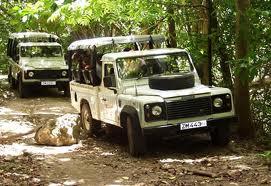 Order Jeep Safari