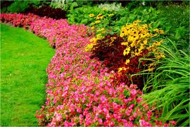 Weeding of flower beds