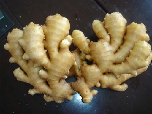 Order Fresh Ginger