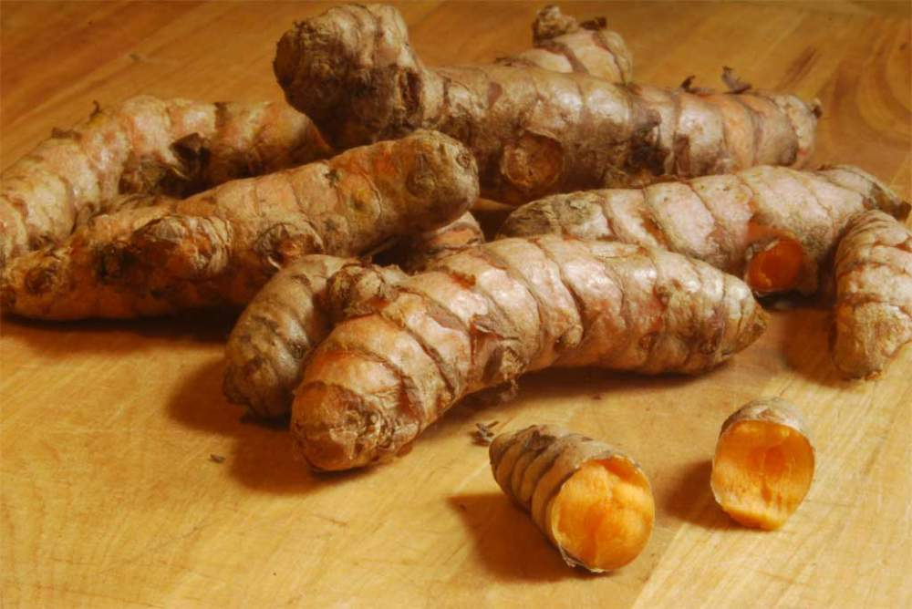Order Fresh Turmeric