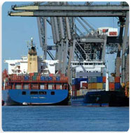 Order Non-vessel Operating Common Carrier-NVOCC Operations