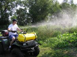 Order Mosquito control services