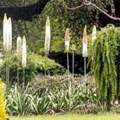 Order Garden Contractor