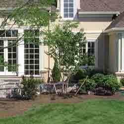 Order Landscaping Consultants Services