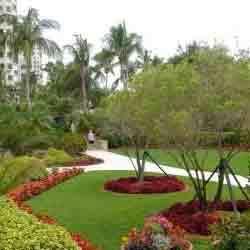 Order Landscape Designer