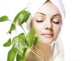 Order Ayerbedic & Herbal Facial Skin Care Services
