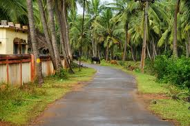Order Konaseema Tour Package
