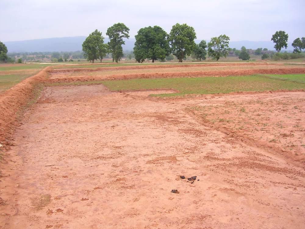 Order Rent Of Land