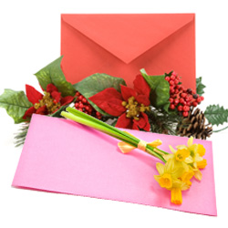 Order Envelope Printing Services
