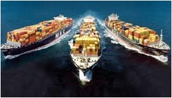 Order Sea Freight LCL & FCL