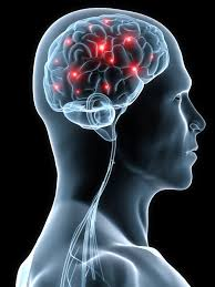 Order Neurosurgery