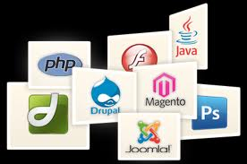 Order Web Site Designing And Software Development