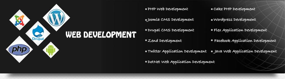 Order Web Development Services