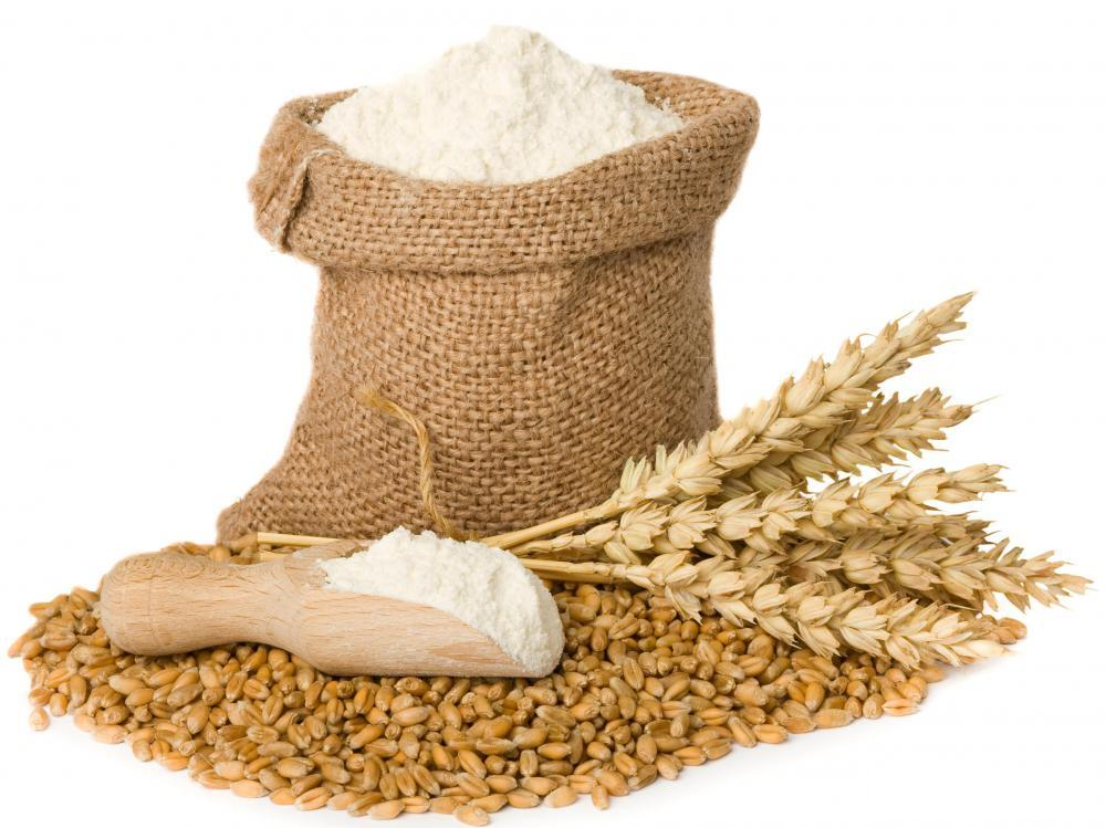 Whole Wheat Flour Exporter India