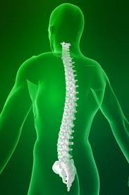 Order Spine Surgery India