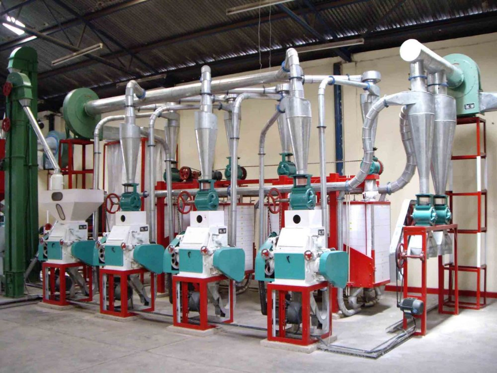 Order Turnkey Basis Grain Processing Plant Setup
