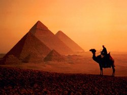 Order Egyptian wonder