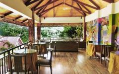 Hotel cafe - Jungle
