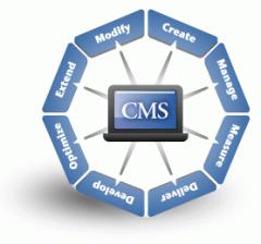 Pro Cms Services