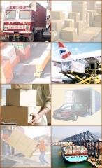 Transportation of Import/Export