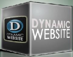 Dynamic Websites Designing