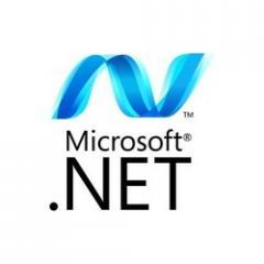 Microsoft dot Net