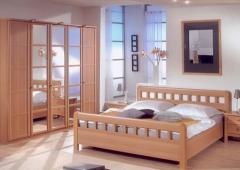 Development of the design of bed room wardrobe