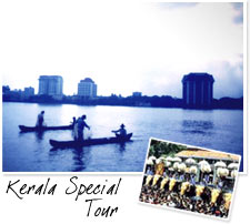 Tours - Kerala Special 7 Days Tour