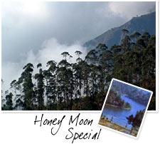 Honey moon Special 7 Days tour
