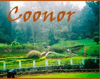 Tourism and rest - Ooty - Coonoor