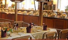Hotel restaurant - The Excitement