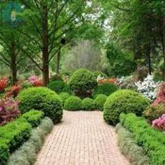 Land Scape/Garden Treatment Services