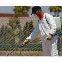 Pests Management Services