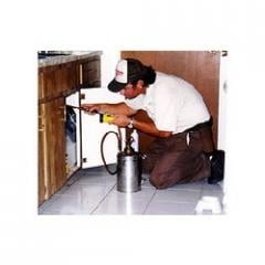 Insect Pest Management Treatment Services