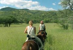 Tourism and rest - Horse Safari in Rajasthan