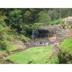 Kodaikanal Tour Package