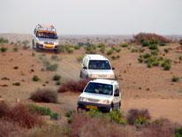 Tourism and rest - Jeep Safari