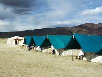 Tourism and rest - Ladakh festival camps