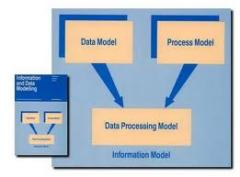 Curriculums on processing and management of the data