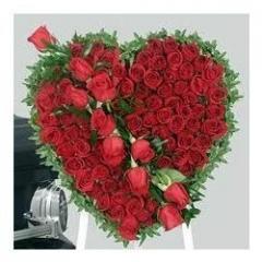 White & Red Roses Valentine Model